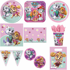 Skye & Everest Girls Paw Patrol Birthday Party Plates Bunting Cups Balloons