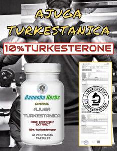 AJUGA TURKESTANICA High Potency  Extract 10%TURKESTERONE 60 x 400mg Capsules