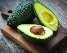 1 Pcs Avocado Fruit Seeds Ordinary Kind Organic Tasty Salad Kitchen Eat