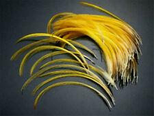 5 Pcs. Golden Pheasant Head Crest Feathers - US Seller