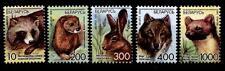 Marderhund, Nerz, Hase, Wolf, Baummarder. 5W. Weißrußland 2008