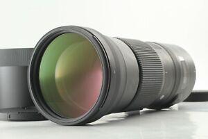 【MINT】 Sigma AF 150-600mm f5-6.3 DG OS HSM For Nikon F Mount From Japan #804