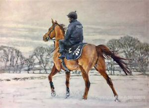 Race Horse in the Snow Christmas Cards pack of 10 by Jane Braithwaite C591X