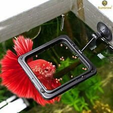 Betta Feeding Ring for Flakes & other Floating Fish Foods. Reduces Debris