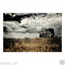 HALLOWEEN Party Decoration Prop HAUNTED FARMHOUSE Backdrop Photo Mural Banner