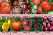 Tomatensamen, 10 alte Russische Sorten, Samen Set_