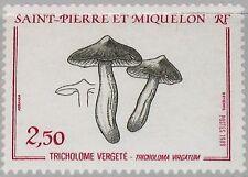 ST. PIERRE MIQUELON SPM 1989 569 489 Fungus Pilze Mushrooms Flora Nature MNH