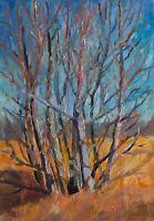 Wild Tree - Original Landscape Painting Oil on Canvas Plein air Impressionism