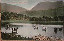 Irish Postcard ON THE MIDDLE LAKE Cattle Cows Killarney Kerry Ireland Valentine