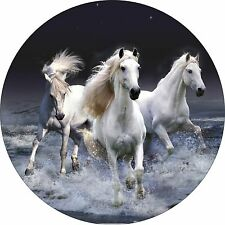 BEAUTIFUL 3 HORSE BOX TRAILER SPARE WHEEL COVER STICKER LAMINATED
