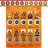 10Pcs / Juego Diez Emperors Monedas Chino Cobre Antiguo Dynasty Vintage es!