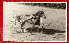 SPORT Horse Racing VINTAGE PHOTO POSTCARD 249