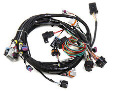 HOLLEY LS1 MAIN HARNESS FOR HP EFI & DOMINATOR EFI PART NUMBER 558-102