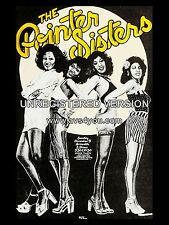 "Pointer Sisters Armadillo 16"" x 12"" Photo Repro Concert Poster"