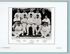 CRICKET  -  UNMOUNTED CRICKET TEAM PRINT - PLAYERS - 1894