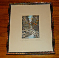 CHARLES SAWYER LISTED ARTIST HAND TINTED HAND-COLORED PHOTOGRAPH THE FLUME GORGE