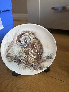 owl plates