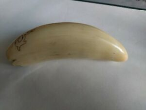 replica sperm whale tooth,odessa 1971, made of plastic