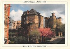 B96593 newcastle upon tyne black gate and the keep   uk