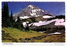 Mt Hood Oregon Postcard Highest Peak Alpine Setting Vintage 1976 Posted Snow