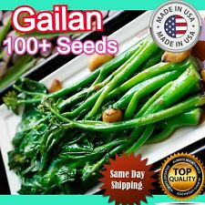 Gailan 100+ Seeds RARE Heirloom White Flower Gailan Kale Fast Growing vegetable