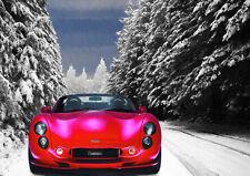 Automotive ART-TVR TUSCAN-ARTE EDIZIONE LIMITATA (25)