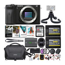 Sony Alpha a6600 APS-C Mirrorless Camera (Body Only) with Accessories Bundle