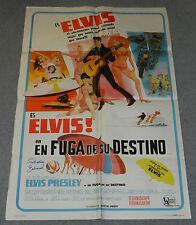 CLAMBAKE Original ELVIS 1sh ARGENTINA MOVIE Poster Signed SHELLEY FABARES Film