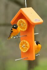Kettle Moraine Recycled Plastic Double Oriole Orange Fruit Bird Feeder #8334D