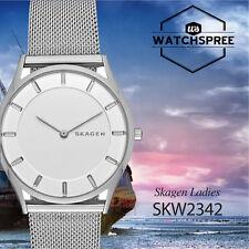 Skagen Holst Slim Steel Mesh Watch SKW2342