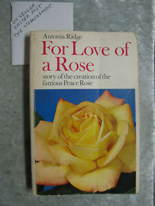 express post For Love Of A Rose - Antonia Ridge OzSellerFasterPost!
