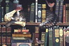 "Charles Wysocki Max In The Stacks Image Size : 9"" x 12"""