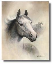 White/Gray Race Horse Head II Ruane Manning 8x10 Wall Art Print Picture