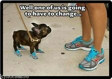 Funny French Bulldog Have To Change Refrigerator Magnet