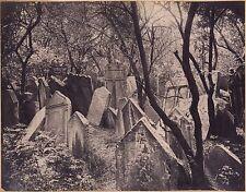 Cimetière juif de Prague Tirage Photomécanique Photoglyptie ca 1880