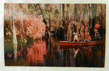 Vintage Uncirculated Cypress Gardens Charleston South Carolina Souvenir Postcard