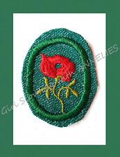 RED ROSE Girl Scout TROOP CREST 1948 Crimped Edge EUC Badge Multi=1 Ship Chrg