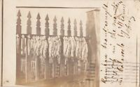RPPC Postcard Fish Rainbow Trout Drying on a Fence 1914