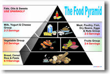 Food Pyramid  Healthy Eating Lunch Meal Diet NEW POSTER