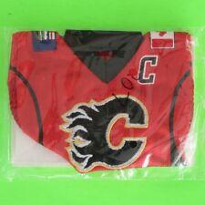 JAROME IGINLA  2007-08  MINI JERSEY COLLECTION HOME   #mini5   Calgary Flames
