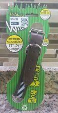 Dog Collar Wild Zebra Animal Print Adjustable Size M/Medium 17-21 inch- Stylish