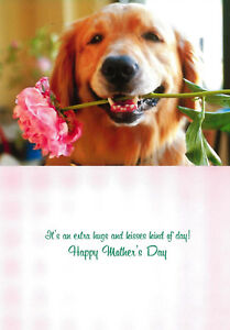 Avanti funny greeting card mom mother's day dog puppy sweet