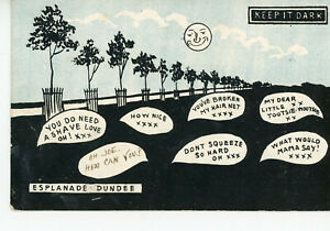 """ SCOTLAND ""  DUNDEE      ESPLANADE       KEEP  IT  DARK      1904/17s"