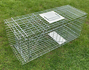 "31"" Humane folding X-LARGE  Cat trap,keeping pet unharmed, cat,pet catching trap"