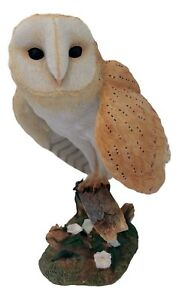 New Boxed Retired Country Artists Barn Owl Model Hand Painted Product CA00242