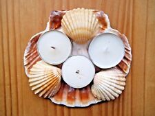Hand made decorative tea light. Natural, real sea shell candle holder