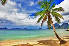VLIES Fototapete-PALMEN-STRAND-(5118V)-Karibik Südsee Meer Dünen Ozean Sonne