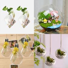 2/3pcs Glass Hanging Ball Vase Flower Planter Pot Terrarium Container Home Garde