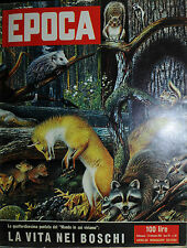 EPOCA N°312/ 23/SET/1956 * LA VITA NEI BOSCHI * AUDREY HEPBURN -