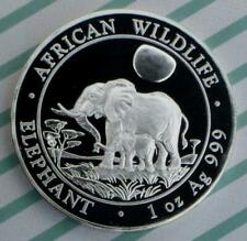 2011 Somali Republic African Elephant 1oz .999 Fine Silver 100 Shillings Coin
